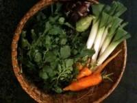 February 17, 2012 harvest:  leeks, kohlrabi, carrots, arugula
