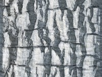 Bark Diagrams