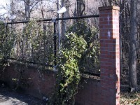 Trellis and Trail Entrance